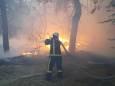 Пожежі на Луганщині: кількість жертв зросла до дев'яти