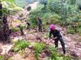 11 человек погибло после оползней в Индонезии
