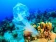 Пластиковый мусор интенсивно оседает на дно океана
