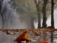Pogoda w Polsce na 18.10.2020