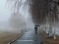 Теплая и бесснежная: климатолог рассказала, какой может быть зима в Киеве