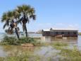 25 тисяч людей були переселені в результаті повені на берегах озера Туркана в Кенії