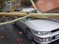 На австралийский штат Квинсленд обрушился шторм