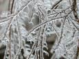 Редкий ледяной шторм обрушился на Оклахому