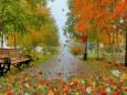 Погода в Украине на пятницу, 30 октября