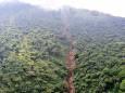 У Сальвадорі більше 40 загиблих або зниклих безвісти після зсуву