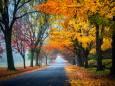 Погода в Україні на п'ятницю, 13 листопада