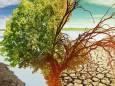 Климат не спасет даже полное прекращение выбросов