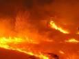 Американский штат Невада страдает от масштабных лесных пожаров