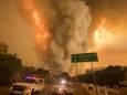 Жители Калифорнии могут остаться без электричества из-за лесных пожаров