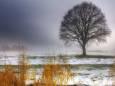 Погода в Україні на неділю, 29 листопада