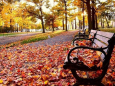 Погодные итоги спокойного ноября в столице