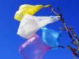 В Украине снизится уровень засорения после запрета пластиковых пакетов
