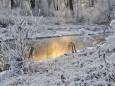 Погода в Україні на неділю, 6 грудня