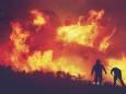 В Украине ужесточили ответственность за пожары