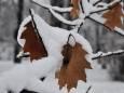 Погодные приметы на 4 января