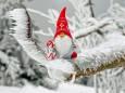 Синоптик рассказал, какой будет погода на Рождество