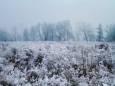 Погодные приметы на 6 января
