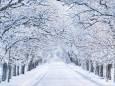 Погодные приметы на 12 января