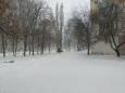 В Харькове и Днепре бушует метель. Фото