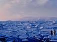 Самый древний лёд на планете может исчезнуть