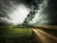 Средневековая Европа переживала погодные аномалии, похожие на нынешние