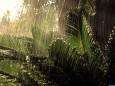 Смещение полосы тропических дождей приведет к засухе сразу в нескольких регионах планеты