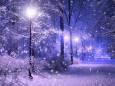Погода в Україні на четвер, 28 січня