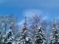 Погода в Україні на вівторок, 2 лютого