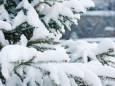 Погода в Україні на понеділок, 8 лютого