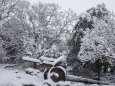 Сильные снегопады обрушились на Сирию, Ливан, Израиль, Палестину, Иорданию, Саудовскую Аравию и Египет