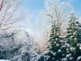 Погода в Україні на суботу, 20 лютого