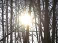 Погода в Україні на суботу, 6 березня