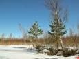 Погода в Україні на неділю, 7 березня