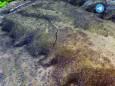 Тбілісі опинився під загрозою сходу гігантського зсуву