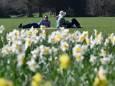 В Великобритании зафиксировали самый теплый день в марте за 53 года