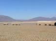 На 85% території Мексики встановилася посуха