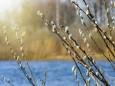 Апрель в Киеве был холоднее климатической нормы
