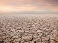 Температура Землі в 2020 році стала рекордно високою за 3 млн років