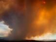 Сильные лесные пожары охватили американский штат Аризона