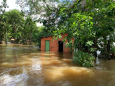 На севере Бразилии из-за наводнения объявлено чрезвычайное положение