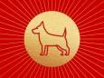 Китайський гороскоп на вересень: Собака
