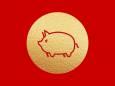 Китайський гороскоп на вересень: Кабан