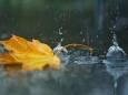 Погода в Україні на неділю, 19 вересня