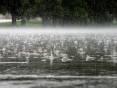 Погода в Україні на п'ятницю, 2 жовтня