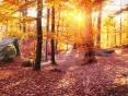 Погода в Украине на понедельник, 26 октября