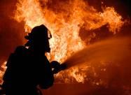 Pożary lasów w Nowej Zelandii [wideo]