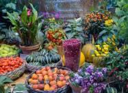 Лунный календарь огородника и садовода на июль 2020 года