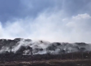 У Сєвєродонецьку загорівся полігон твердих побутових відходів