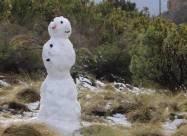Сніг в ПАР викликав ажіотаж серед туристів